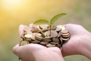 money growing in hand