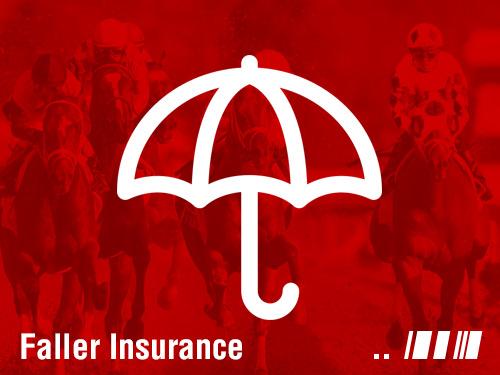 faller insurance